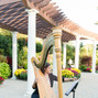 Harpist Lizary Rodriguez 8
