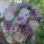 Lark Floral 8