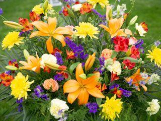 Mamaroneck Flowers 4