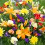 Mamaroneck Flowers 9