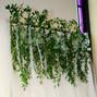 Belak Flowers 14