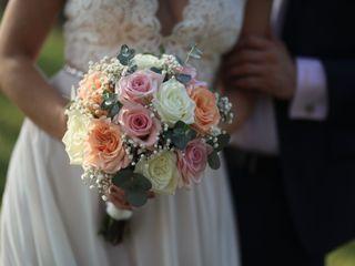 Beneva Weddings 2