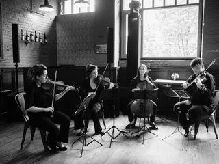 Velveteen Ensemble 3
