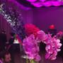 Superior Florist Ltd. 17