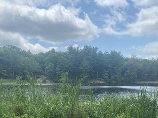 Arrow Park Lake and Lodge 2