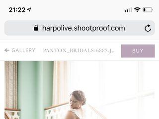Harp & Olive 2