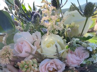 Wild Poppy Florists 5