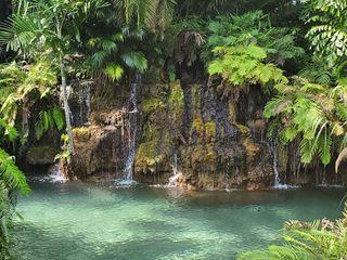 Secret Gardens Miami 3