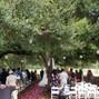 Whispering Oaks Winery 9