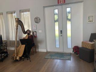 The Elegant Harp 2