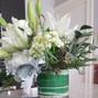 Katydid Flowers 14