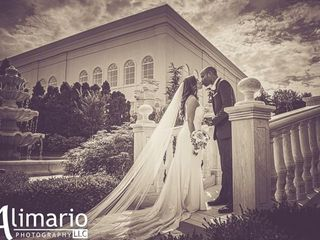 AlimarioPhoto LLC 3