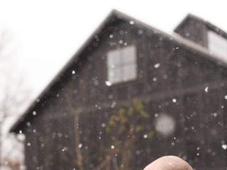 Sam & Grace Photography 5
