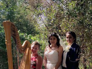 Harp Elegance: Joanna Whitsett, harpist 3