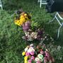 Vera Flora Farm 8