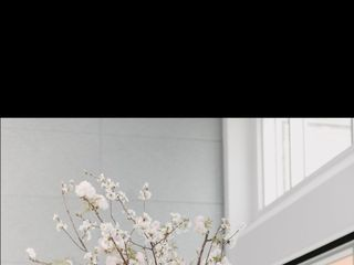 Superior Florist Ltd. 5