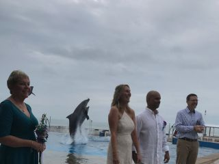 Marineland Dolphin Adventure 5