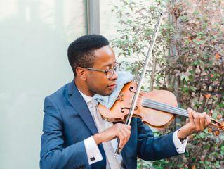 MDH Violin 5