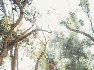 Sun & Sparrow Photo & Films 5