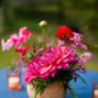 Rosehip Flora 14