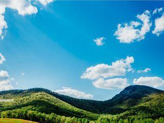 Yonah Mountain Vineyards 6