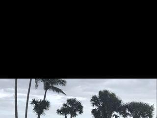 Sundial Beach Resort & Spa 6