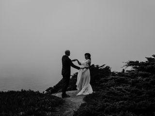 Trees & Seas Photography 6
