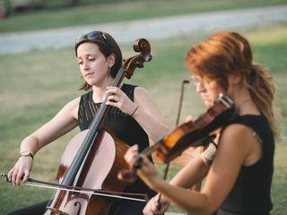 Petals String Duo 4