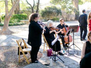 Terra Vista Strings 7
