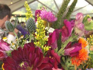 Garden Of Life Flowers 6