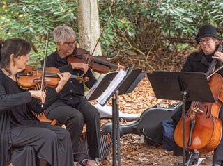 Penn Strings 2