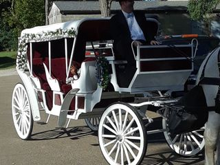 Carriage Limousine Service - Horse Drawn Carriages 4