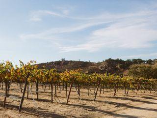 Milagro Farm Winery 5