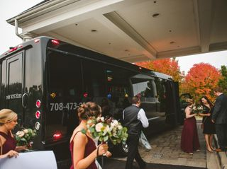 Al's Platinum Limousine 4