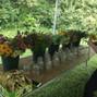 Vera Flora Farm 9