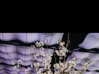 Superior Florist Ltd. 6