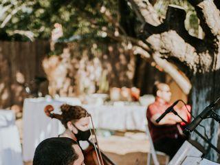 Violines Kamayd 1