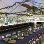 Airlie Gardens 10