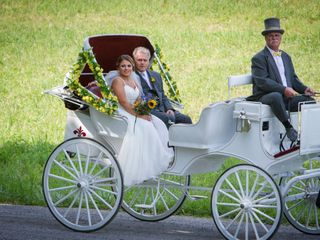 Carriage Limousine Service - Horse Drawn Carriages 7
