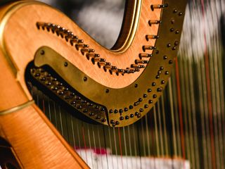 Ashley Toman- Harpist 3