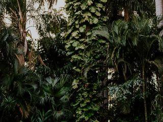 Sunken gardens 4