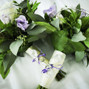 Kistner's Flowers 12