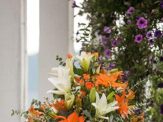 FloraWorx 6