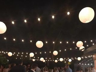 Tampa Lights 3