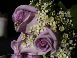 H.J. Benken Florist & Garden Center 5