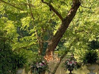 Alda's Magnolia Hill 3