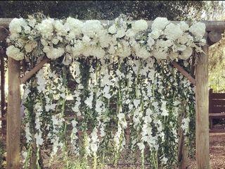 Draping Wedding 1
