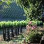 Arista Winery 3