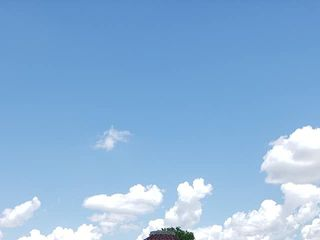 Charleston Sky 3