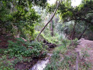 Oak Canyon Nature Center 2